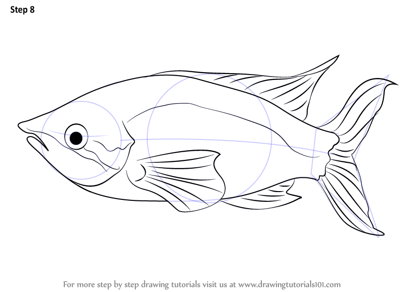 how to make a fish drawing