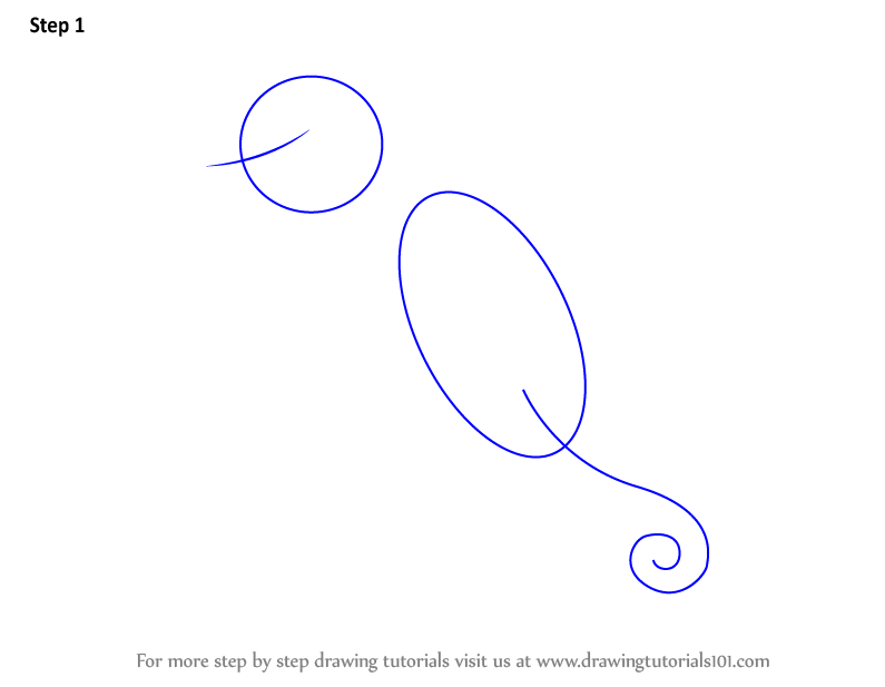 how to draw a seahorse step by step easy