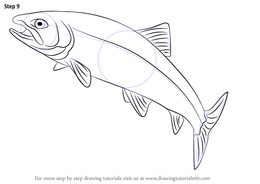 Learn how to draw a trout fishes step by step drawing for How to make doodle art