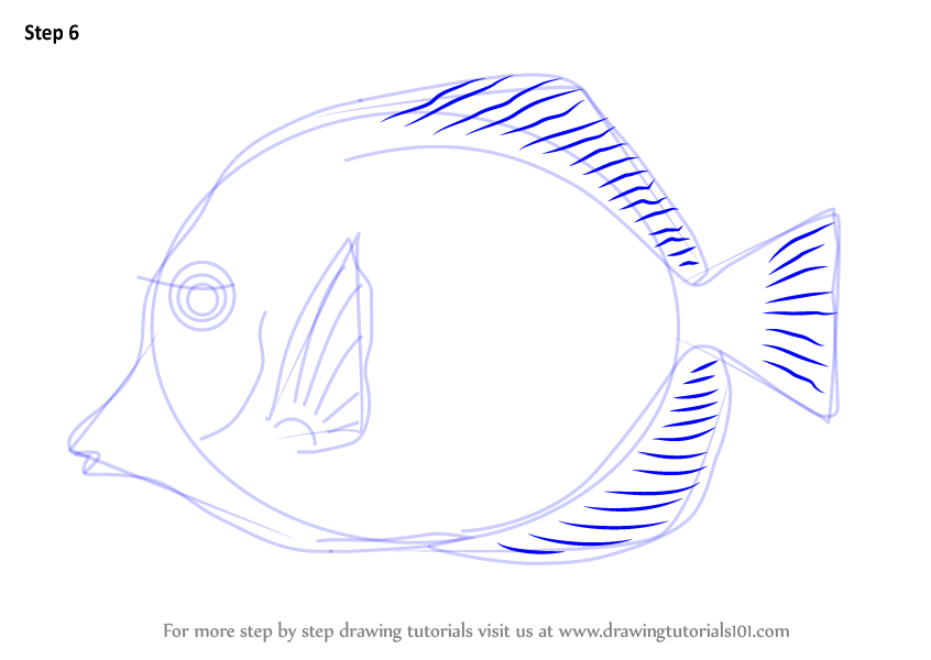 yellow tang coloring pages - photo #37