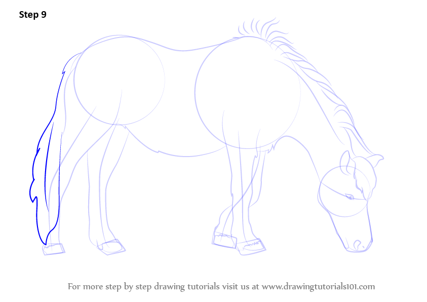 Learn How to Draw a Horse Eating Grass (Horses) Step by ...