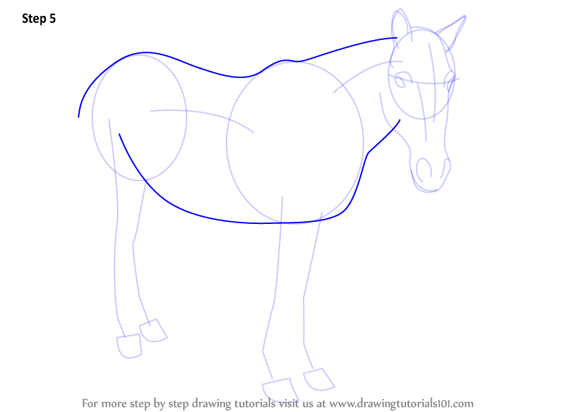 how to draw a horse body