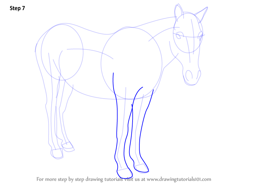 how to draw horse legs step by step