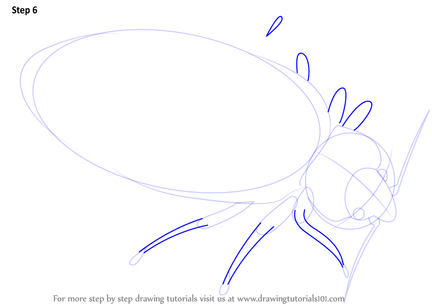 how to draw a hornet step by step