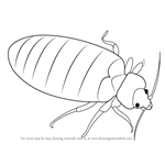 How to Draw a Bed Bug