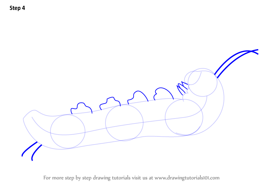 how to draw caterpillar step by step