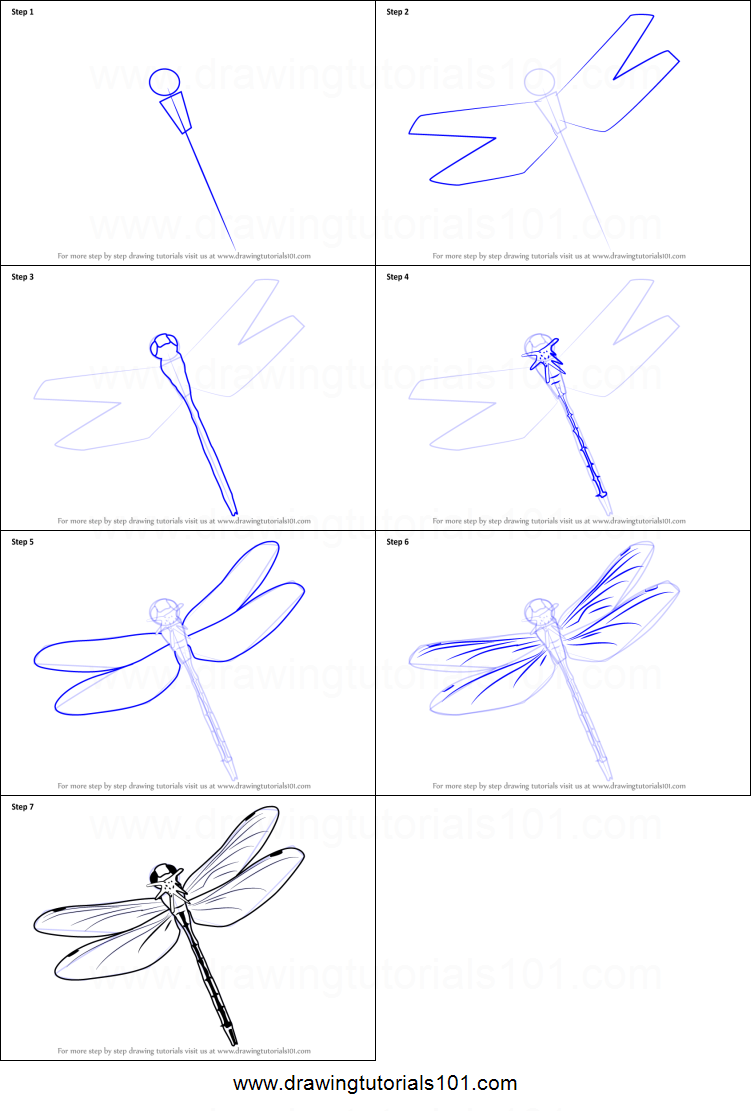 image about Dragonfly Printable known as How towards Attract a Traveling Dragonfly printable phase by means of stage