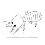 How to Draw a Termite