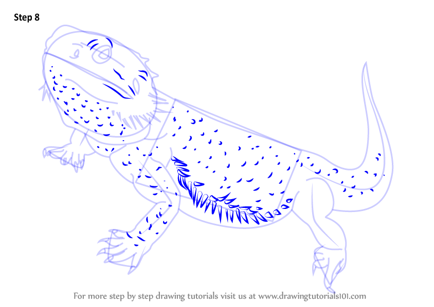 Learn How to Draw a Bearded Dragon
