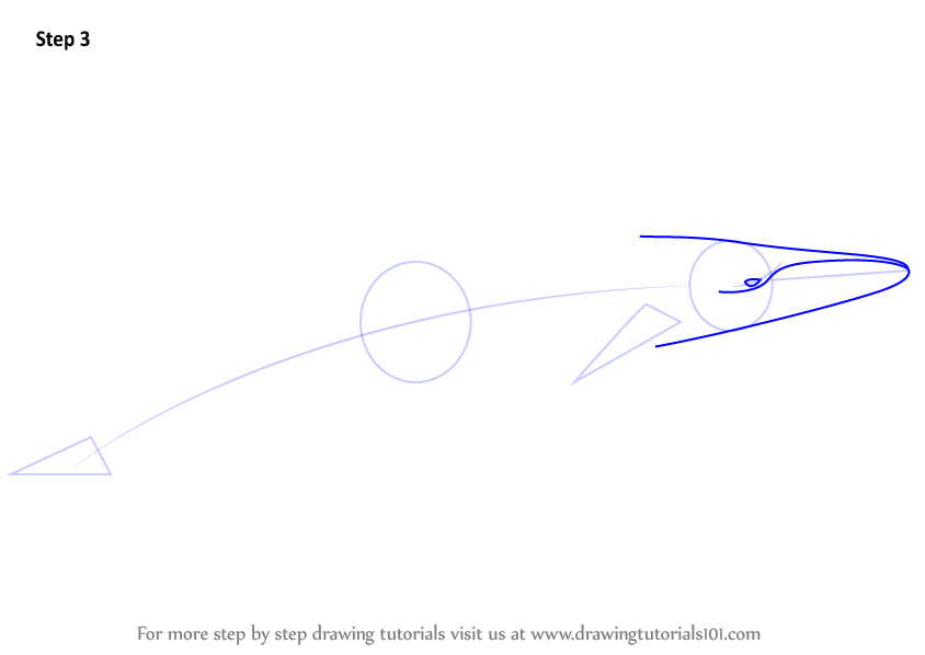 how to draw a humpback whale step by step