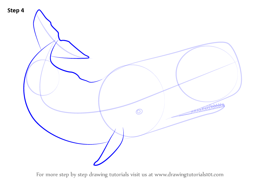 Sperm whale Illustrations and Clipart 507 Sperm whale