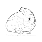 How to Draw an Angora Rabbit