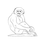 How to Draw a Bonobo
