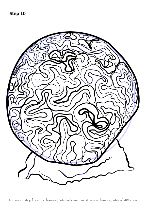 how to draw a brain easy