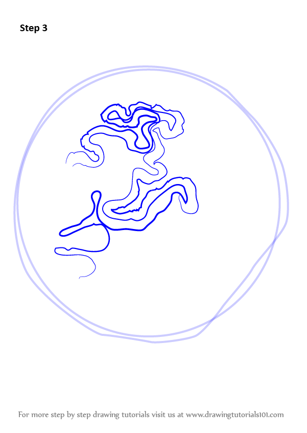 brain coral drawing - photo #10