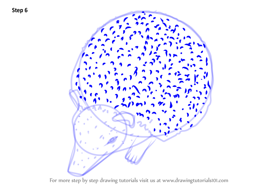 how to draw a hedgehog step by step easy