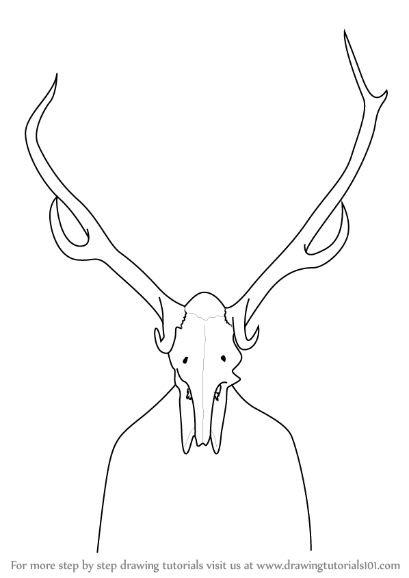 Learn how to draw a deer skull other animals step by step drawing tutorials