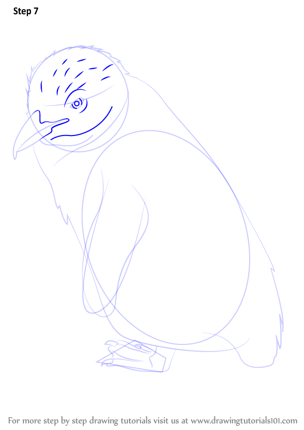 Step by step how to draw a fairy penguin for How to draw a cartoon fairy