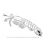 How to Draw a Killer Shrimp