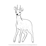 How to Draw a Klipspringer