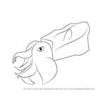 How to Draw a Pfeffer's flamboyant cuttlefish