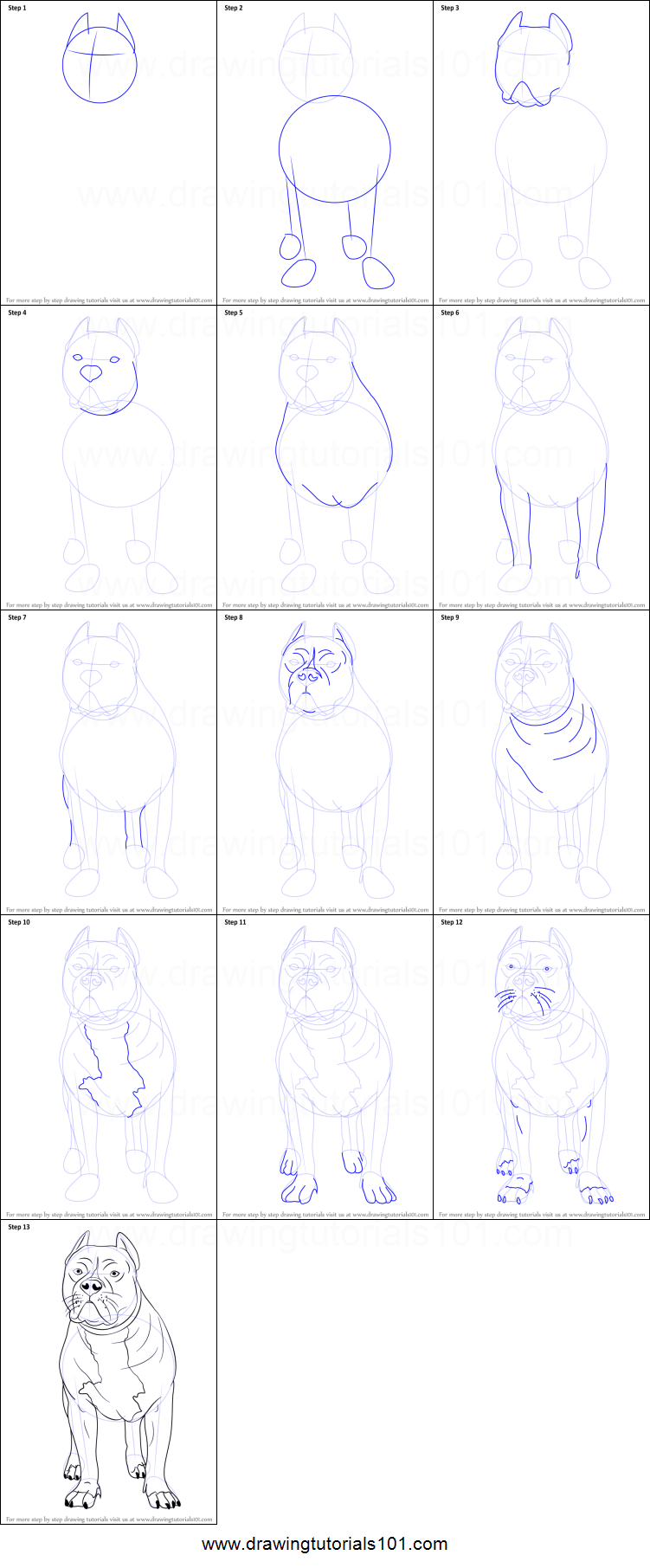 Uncategorized How To Draw A Pitbull Step By Step how to draw a pitbull printable step by drawing sheet drawingtutorials101 com