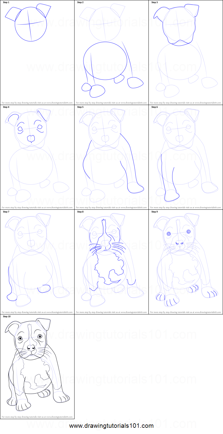 how to draw a pitbull puppy printable step by step drawing sheet drawingtutorials101com