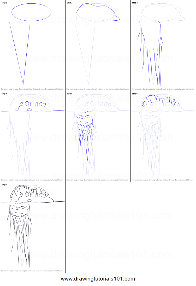 How to Draw a Portuguese Man O 39