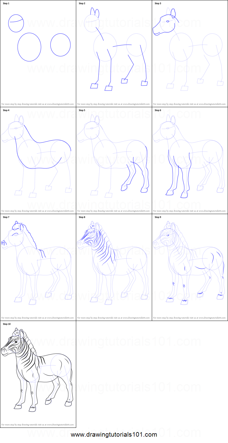 How to Draw an Quagga printable step by step drawing sheet