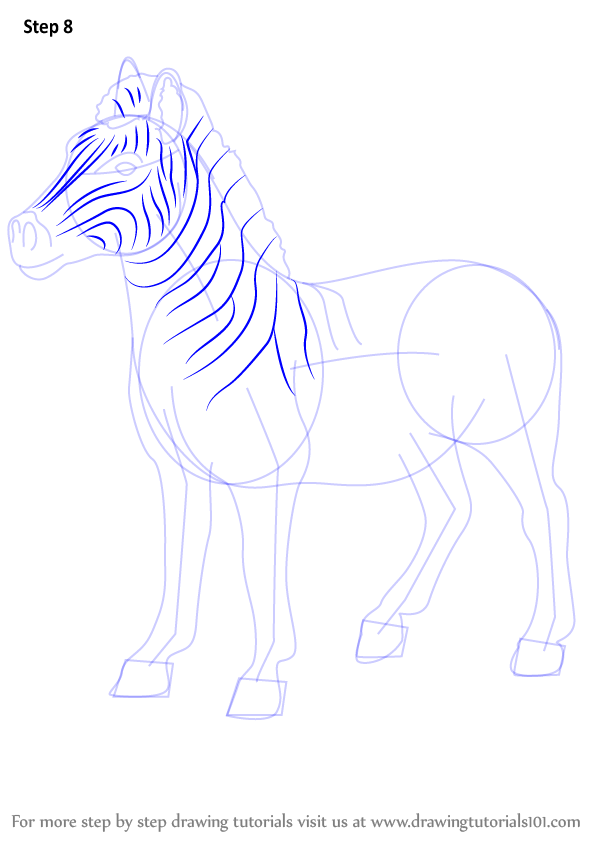 Learn How to Draw an Quagga (Other Animals) Step by Step : Drawing