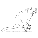 How to Draw Tasmanian devil