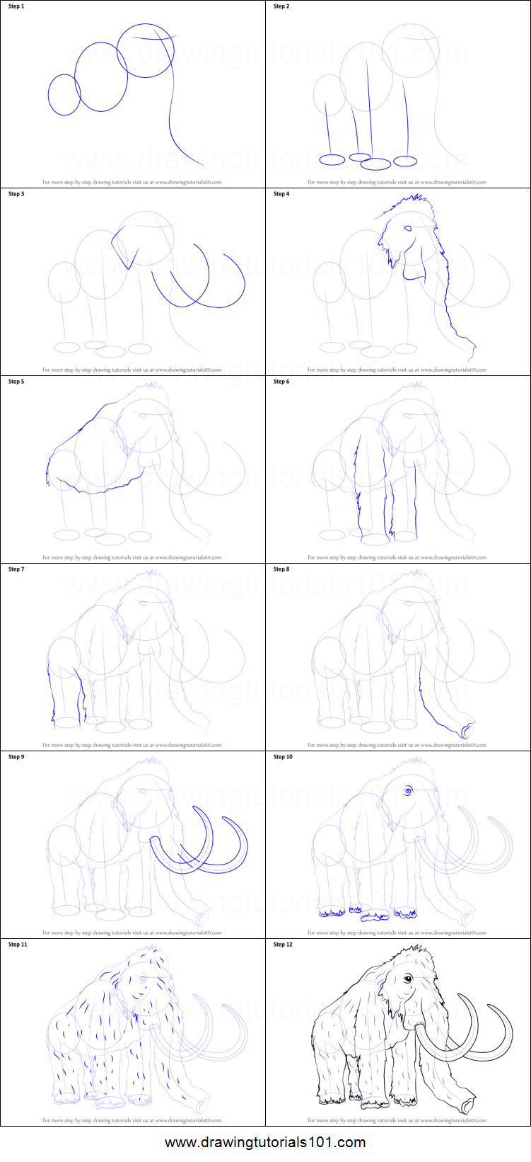 how to draw the cosmet in steps