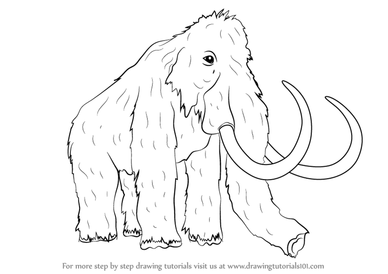 Learn how to draw a woolly mammoth other animals step by for Wooly mammoth coloring page