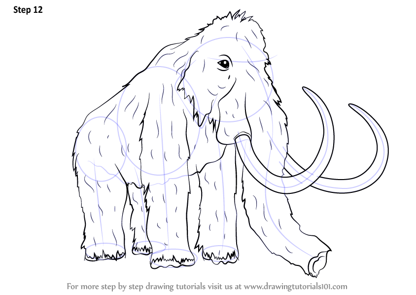 Step By Step How To Draw A Woolly Mammoth