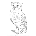 How to Draw an Eurasian Eagle-Owl