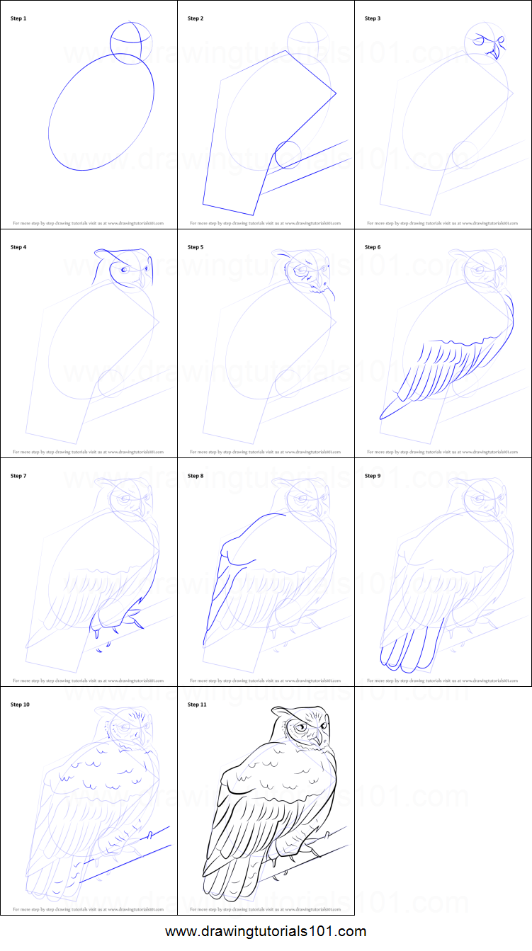How To Draw A Great Horned Owl Printable Step By Step