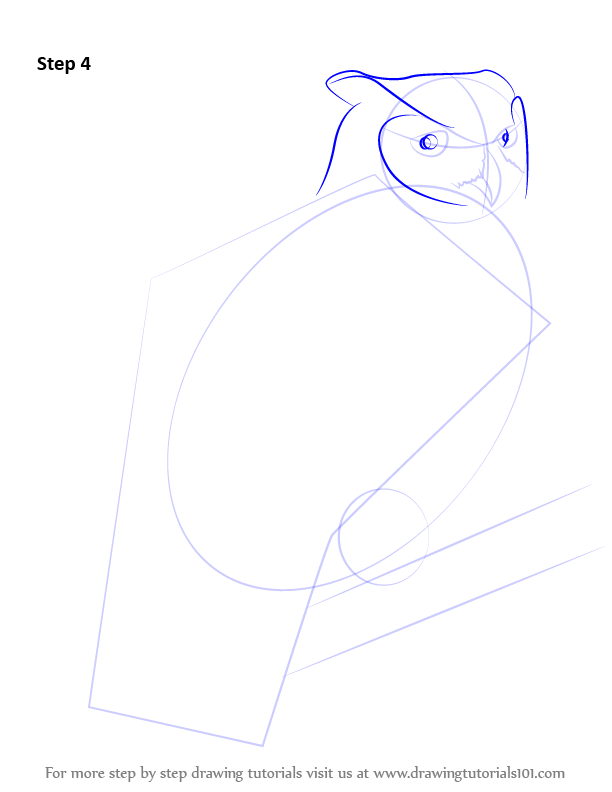 how to draw a owl step by step
