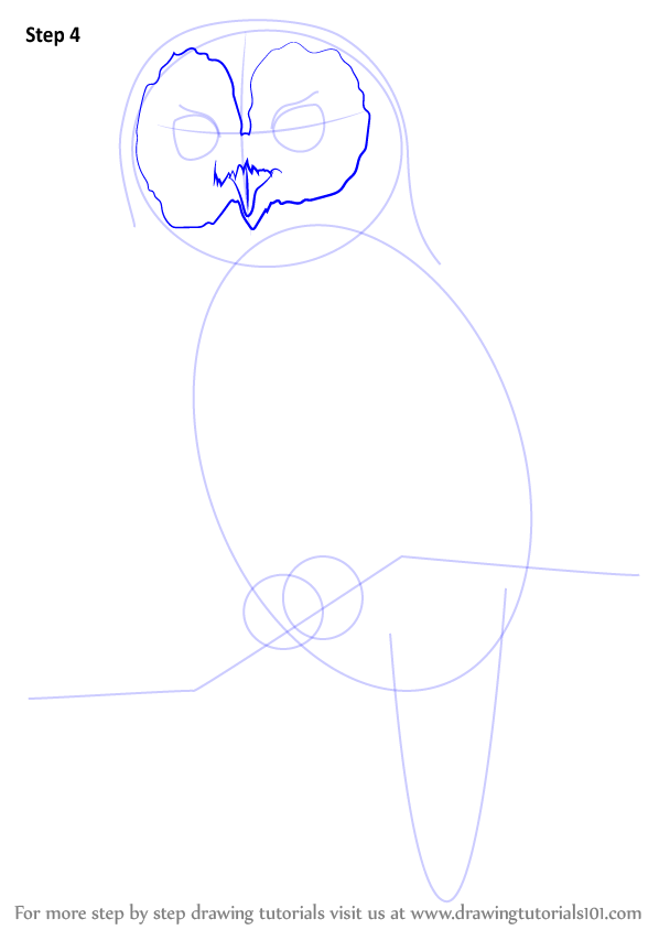 Learn how to draw a tawny owl owls step by step for Step by step drawing an owl