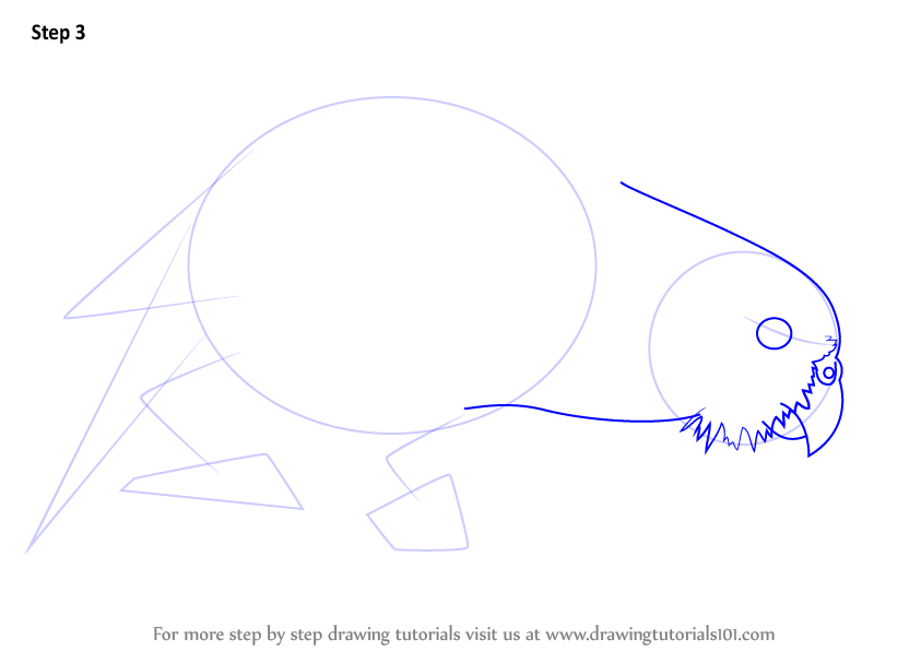 Learn How to Draw a Kakapo (Parrots) Step by Step ...