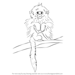 How to Draw a Tonkin Snub-Nosed Monkey