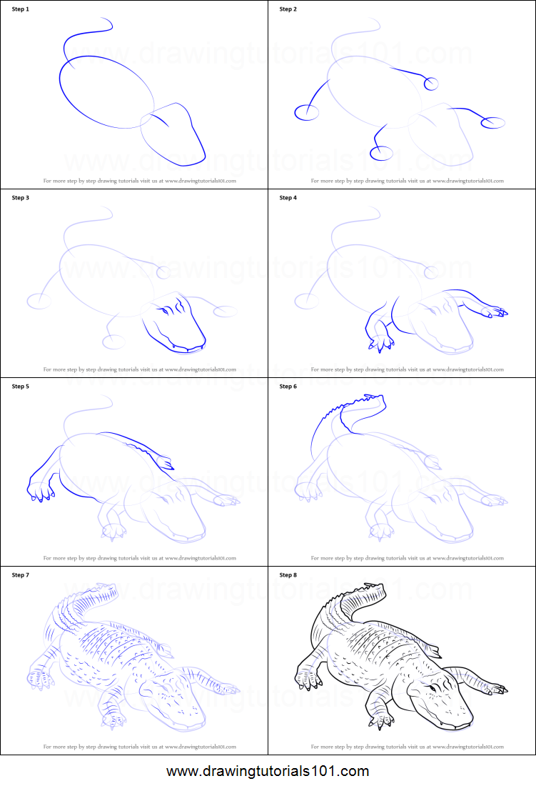 Uncategorized How To Draw An A how to draw an american alligator printable step by drawing sheet drawingtutorials101 com