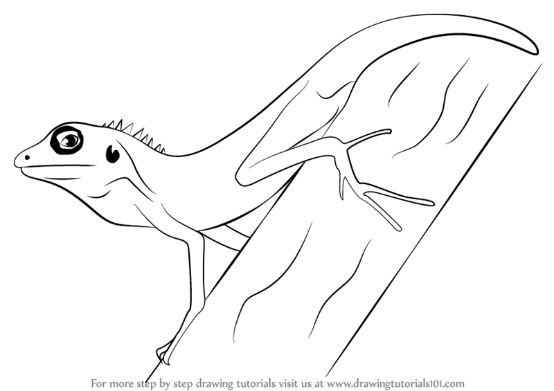 Step by Step Drawing tutorial on How to Draw a Changeable Lizard