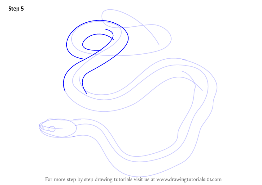 how to draw a snake step by step
