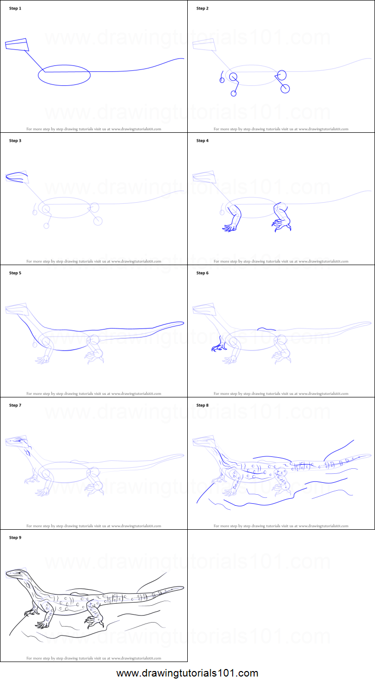 how to draw a goanna printable step by step drawing sheet