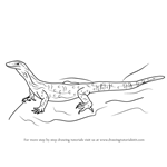 How to Draw a Goanna