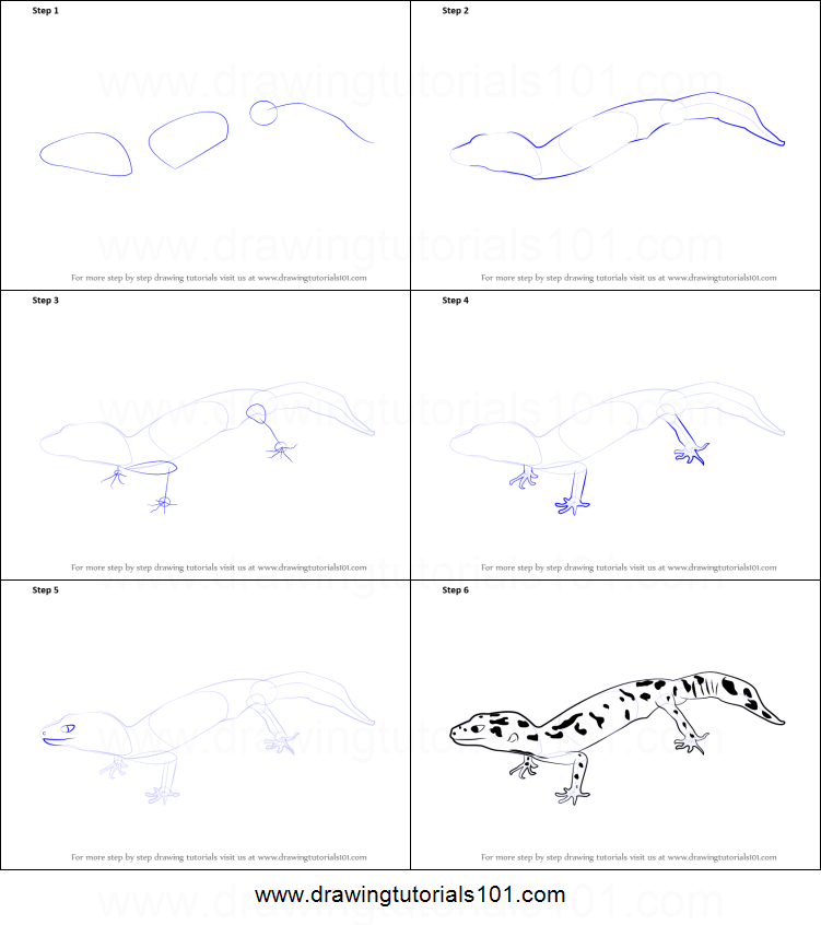 how to draw a leopard lizard printable step by step drawing sheet drawingtutorials101com
