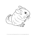 How to Draw a Long-Tailed Chinchilla