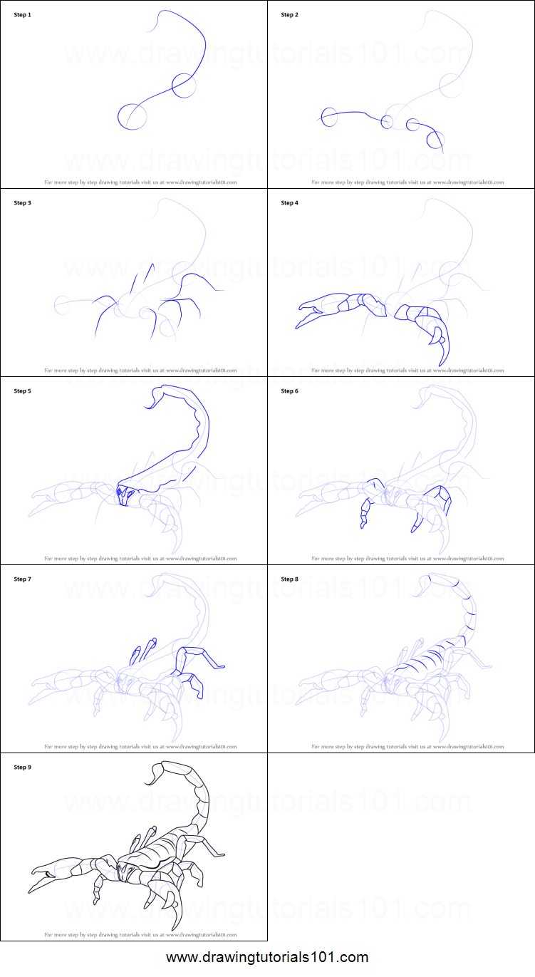 Uncategorized How To Draw A Scorpion Step By Step how to draw an emperor scorpion printable step by drawing sheet drawingtutorials101 com