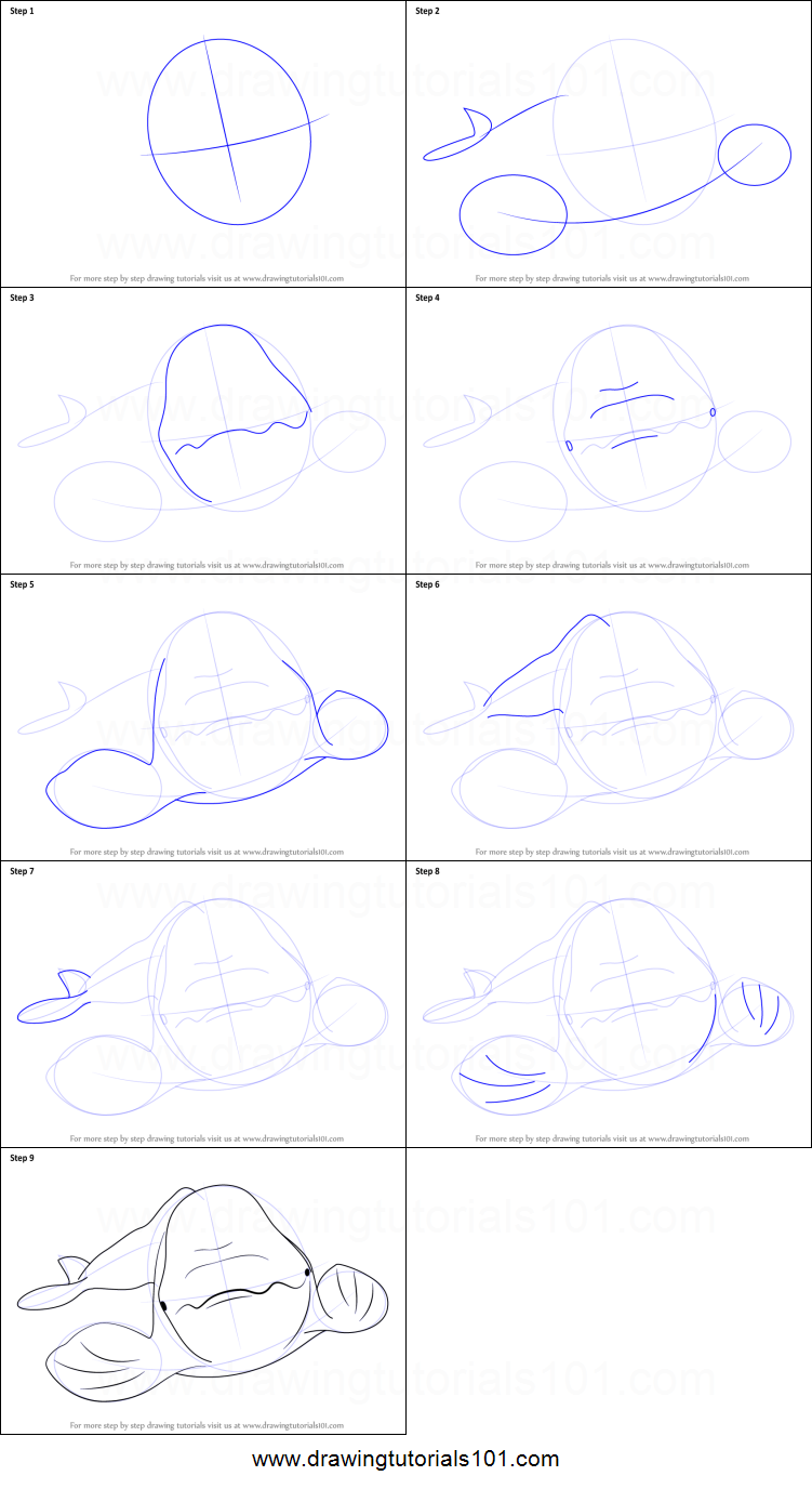 how to draw a beluga whale printable step by step drawing sheet drawingtutorials101com