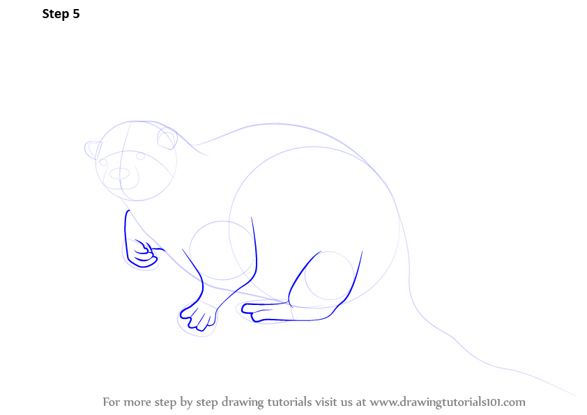 how to draw cartoon otter
